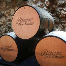 Dans les réserves de Mundo Cuervo, à Tequila.