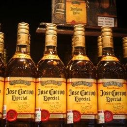 A la distillerie Mondo Cuervo, à Tequila. (Mexique)