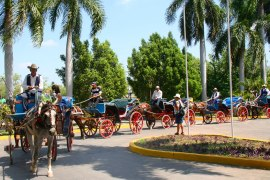 Un cortège de calèches, dans la ville de Bayamo. (Cuba)