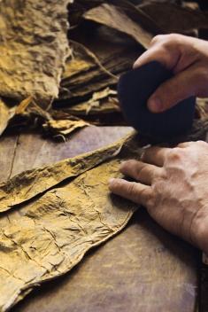 La fabrication des cigares demeure artisanale à Cuba.
