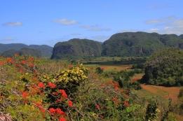 """Les """"mogotes"""" dans la vallée de Vinales. (Cuba)"""