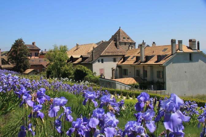 Le jardin, juste derrière le château de Nyon. (Suisse)