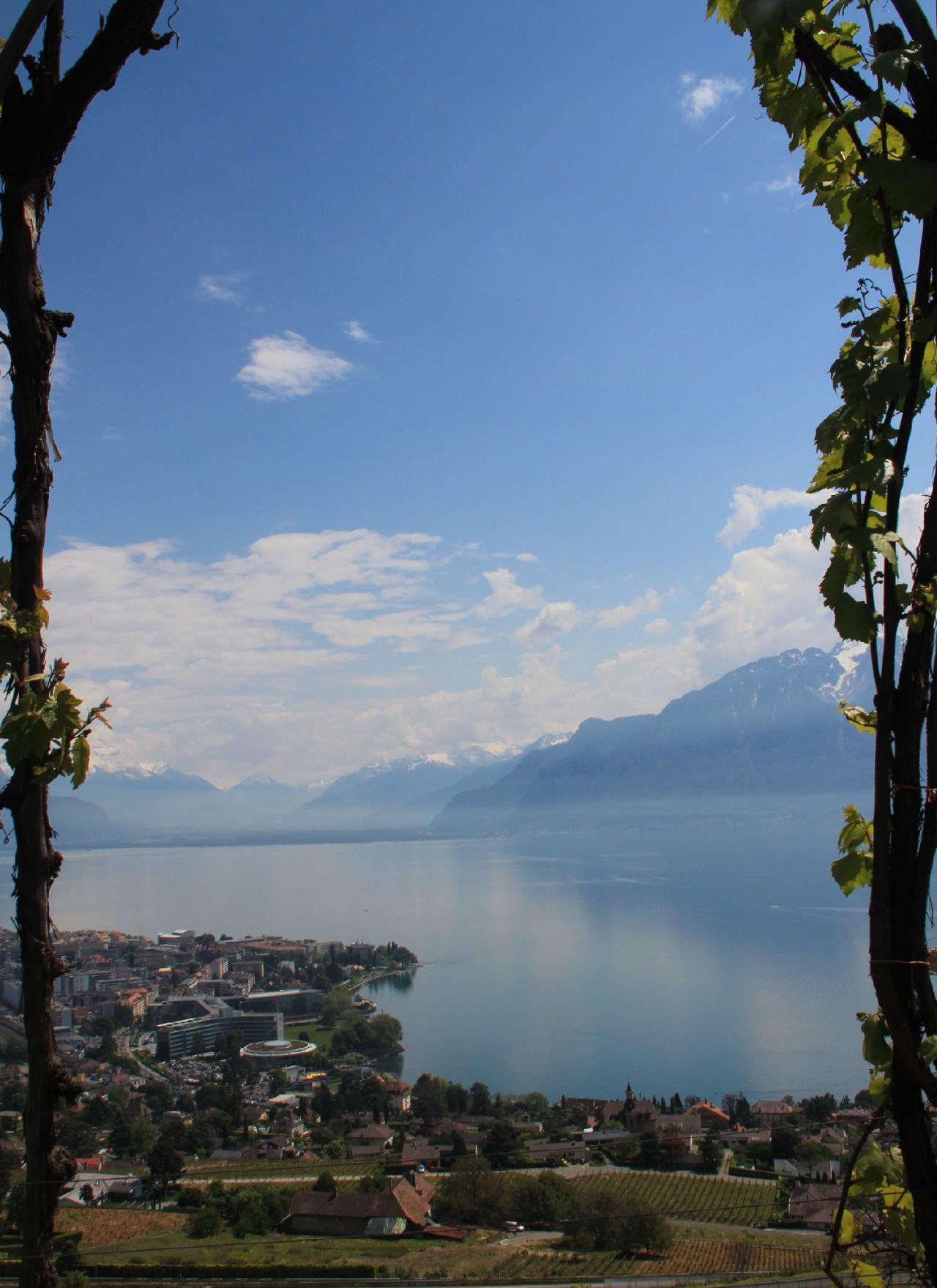 Suisse: Surprises et curiosités autour du lacLéman