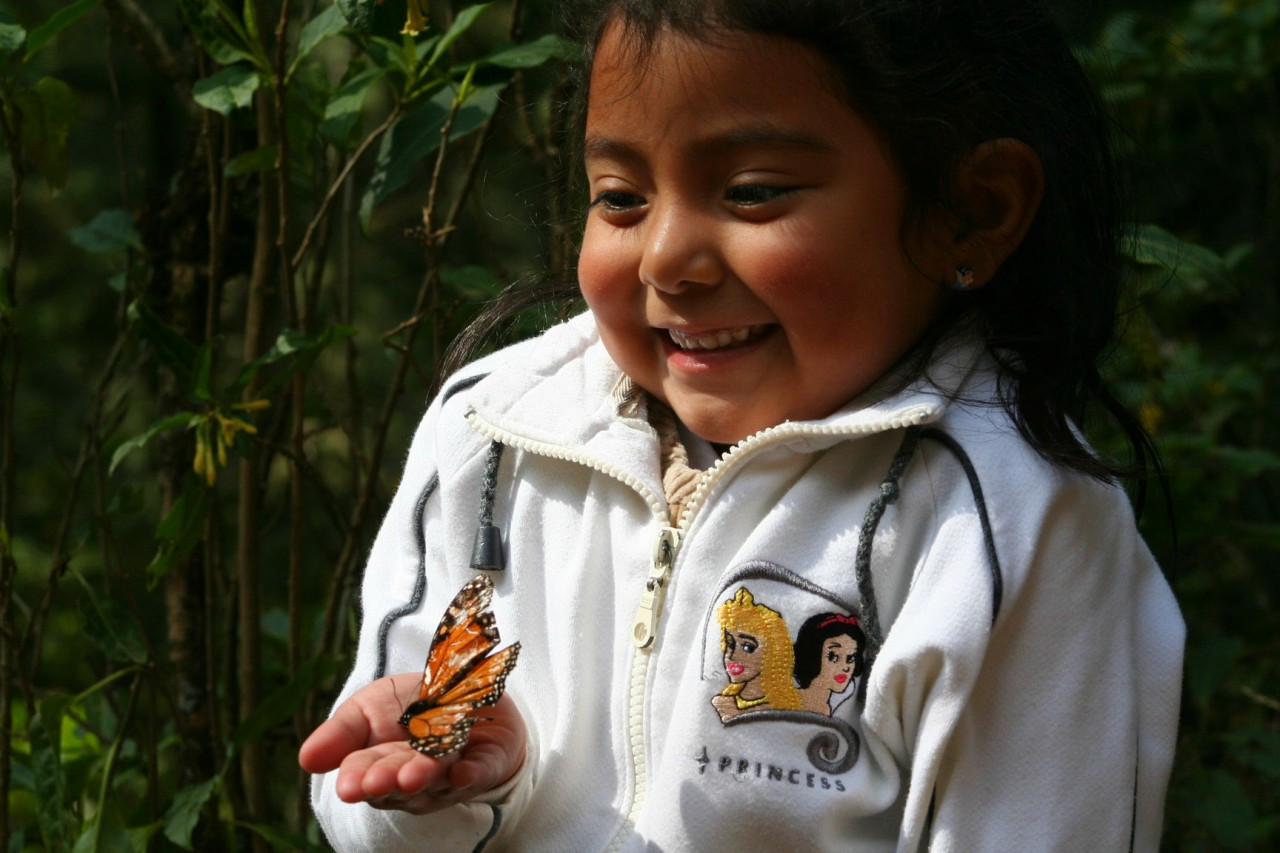 Mexique: Merveilleux monarques!