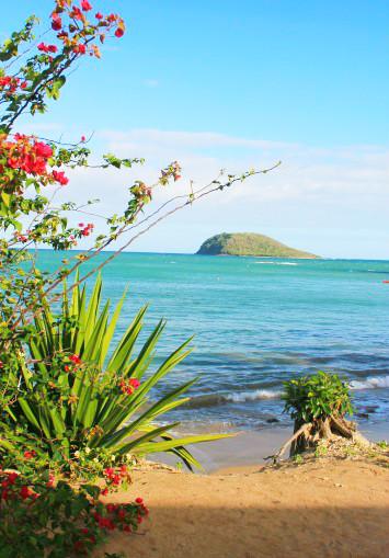 Guadeloupe: eaux paradis…