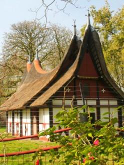 Au Zoo Artis, à Amsterdam.