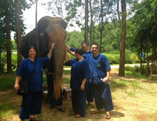 Une belle journée à apprendre le métier de gardien d'éléphant !