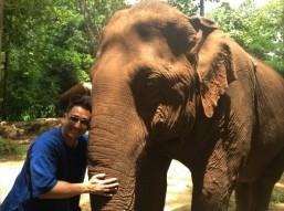 Au Centre de conservation des éléphants, en Thaïlande