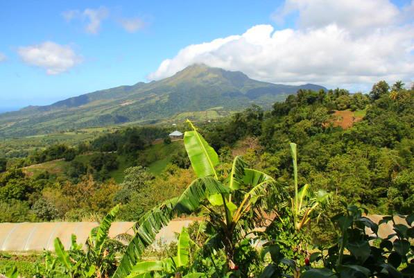 La Montagne Pelée, dans le nord de la Martinique.