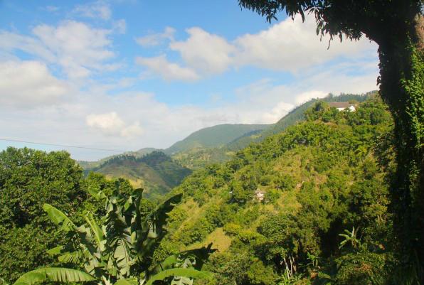 Jamaïque: Hors des sentiersbattus