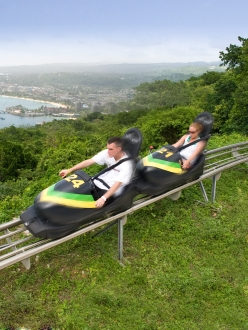 Du bobsleigh avec Rain Forest Adventures.