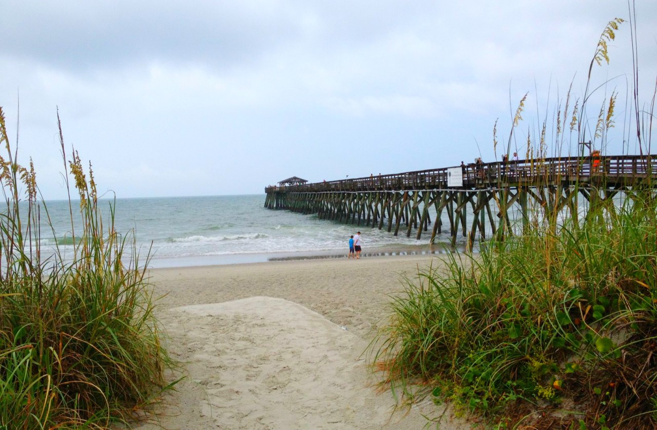 Etats-Unis: Myrtle Beach, côté nature!