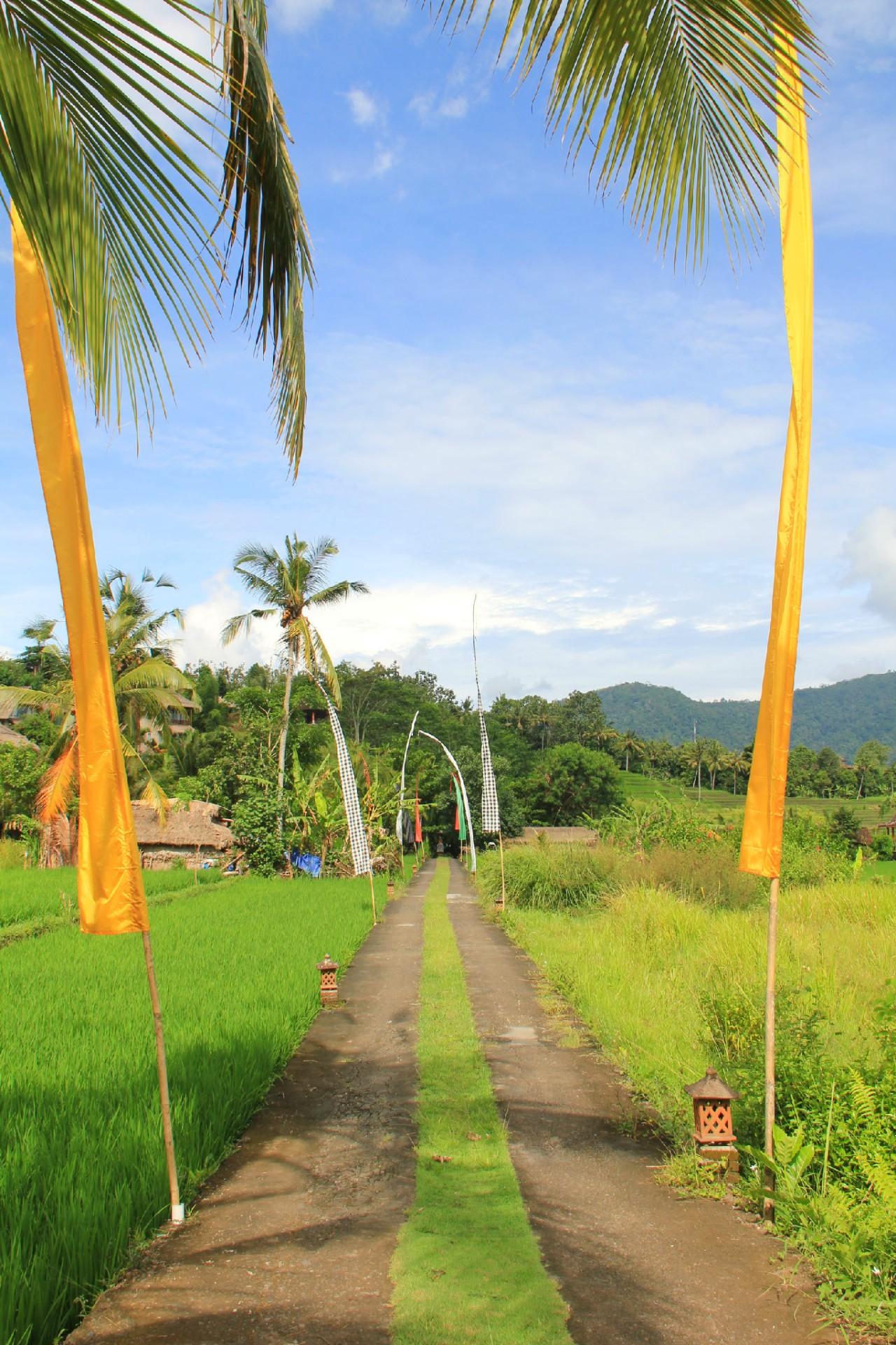Bali: Loin des touristes!