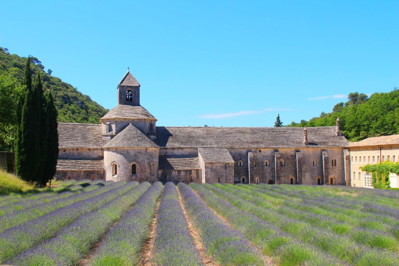 France: La Provence, pour les 5 sens!
