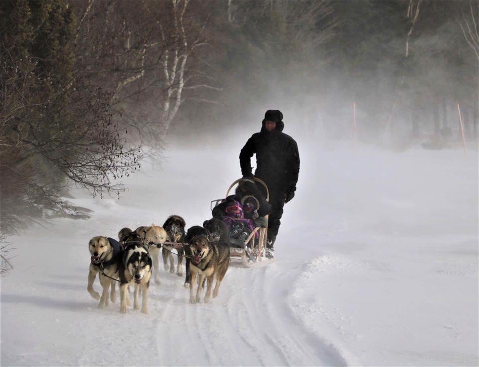 Traîneau à chiens avec Amarok Expedition